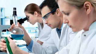 Ehrgeizige Forscher werkeln im Labor