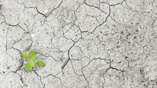 Klimawandel ist ein globales Problem