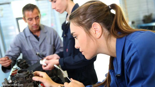 Die Freien Demokraten wollen die Qualifizierung und Vermittlung von Auszubildenden verbessern