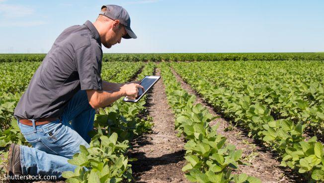 Die Digitalisierung erreicht auch die Landwirtschaft