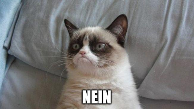 Upload-Filter bedrohen Memes und Satire im Netz