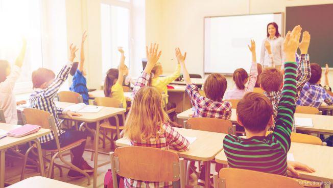 Die Freien Demokraten fordern eine Reform des Bildungsföderalismus in Deutschland