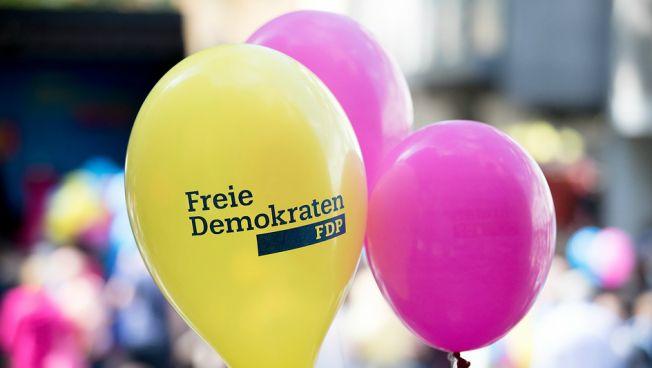 Die FDP kämpft für die nächste Stufe Hessen