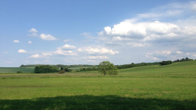 Felder, Wiese, Natur, blauer Himmel