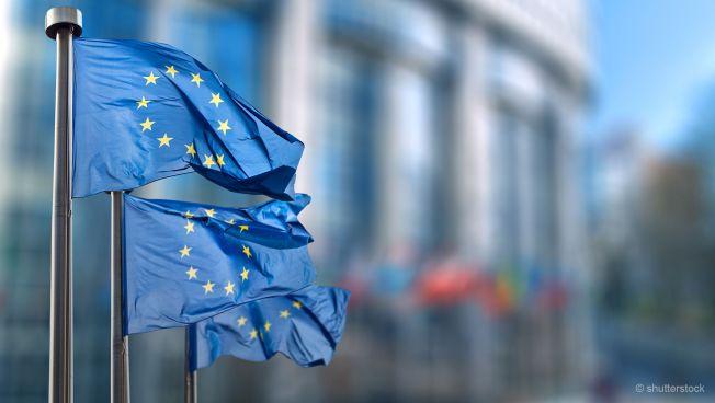 EU-Flaggen, Europaparlament
