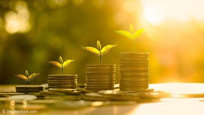 Wirtschaftswachstum, Münzen, Finanzen