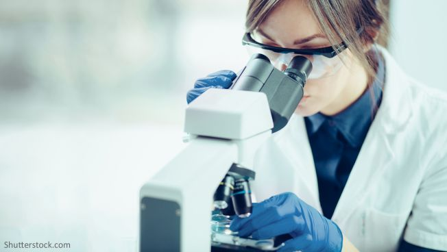 Labor, Mikroskop, Forscherin