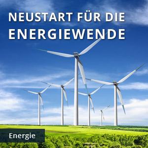 Grafik Positionen Energiewende