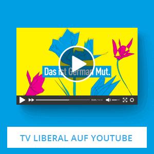 FDP auf Youtube